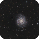 M74,                                Gordon Hansen