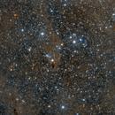 Shark Nebular, Widefield,                                mdohr