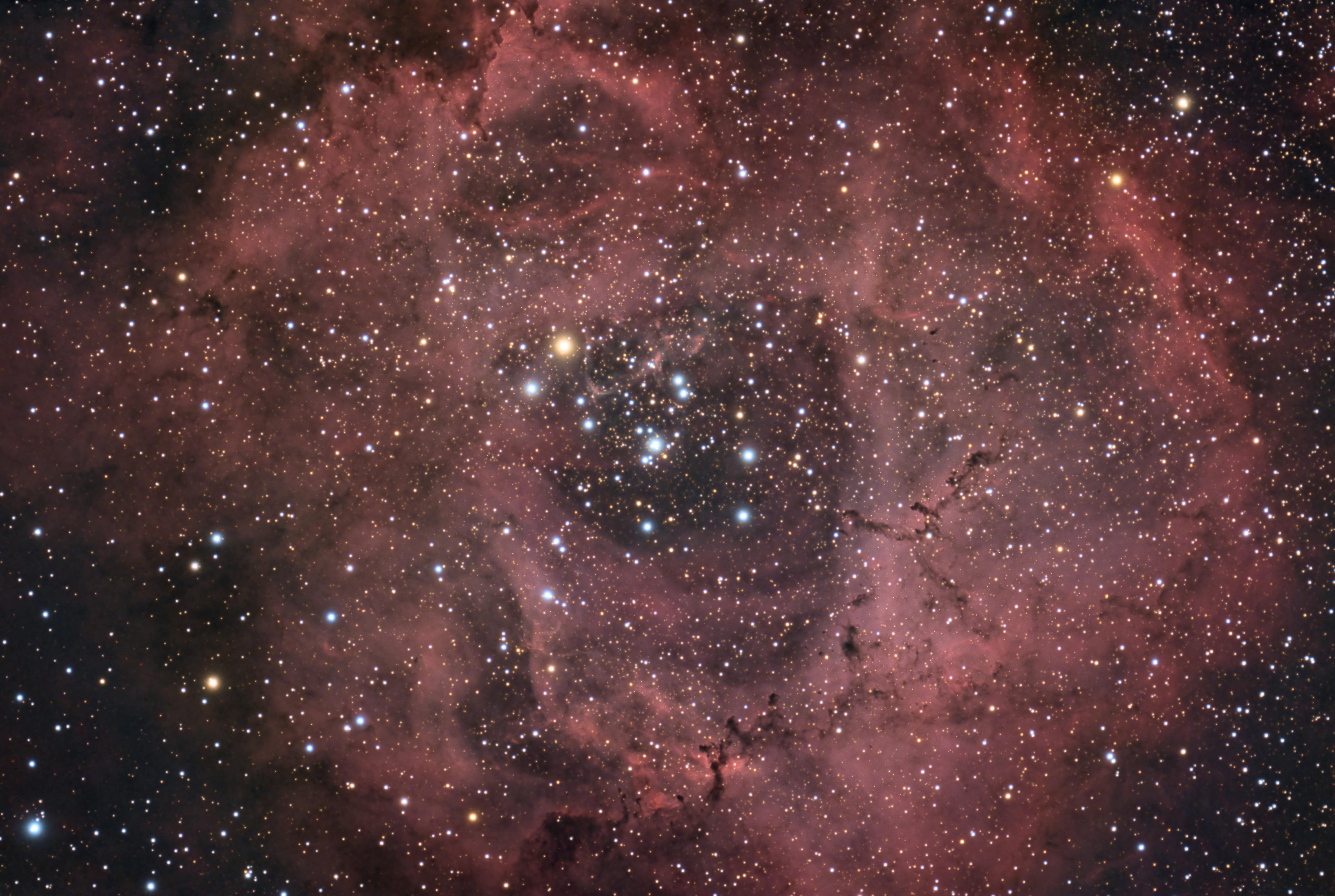 NGC 2244 Rosette Nebula,                                Gene
