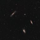 Tripletto del Leone M65 - M66 -NGC3628,                                Alessandro Curci