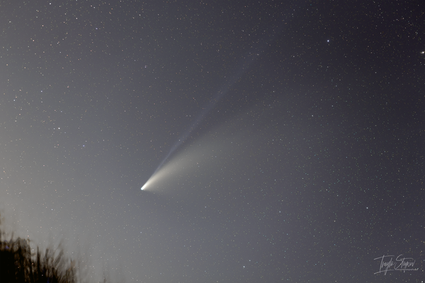 C/2020 F3 (NEOWISE),                                Ivaylo Stoynov