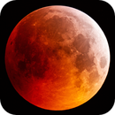 Lunar Eclipse 2019,                                Henny Veerman