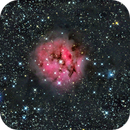 Cocoon Nebula (IC5146),                                Cyril NOGER