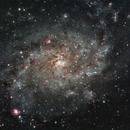 Triangulum Galaxy (M33),                                Trevor Nicholls