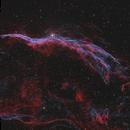 NGC6960 The Witch's Broom,                                Dave Boddington