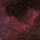 Nebulosa Norteamérica NGC 7000 (Golfo de México),                                Chesco Carbonell