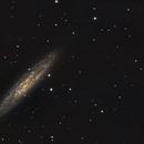 NGC253,                                Armel FAUVEAU
