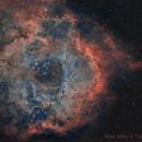 Rosette RGB Ha Oiii,                                Tolga