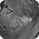 NGC2264 Wide Field In H-alpha,                                mikefulb