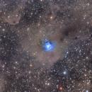 NGC 7023 Iris-Nebula @200mm,                                Oliver