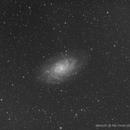 M33,                                Steve Yan