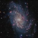 Messier 33,                                Fabian Rodriguez...