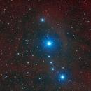 Sh2-264 - Lambda Orionis Ring & Collinder 69,                                Kurt Zeppetello