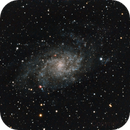 M33,                                Terry