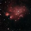 Nebulosa Loreta NGC6559 25-05-2020,                                Wagner