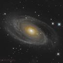 M81,                                Jarrod McKnelly