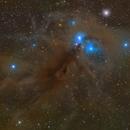 The Anteater Nebula - NGC 6726,                                Trần Hạ