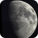 An October moon,                                Randy Flynn
