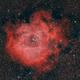 NGC 2244 Rosetta nebula,                                Riedl Rudolf