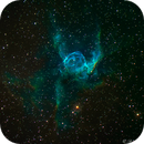 NGC 2359 - The Duck Nebula (Thors Helmet),                                Bruce Rohrlach