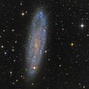 NGC 247,                                Miles Zhou