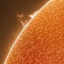 The Sun - greater solar prominence,                                Mehmet Ergün