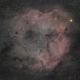 Elephant Trunk Nebula, IC1396,                                petelaa