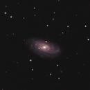 NGC 3953,                                H.Chris