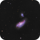 Galaxy NGC4490, a IRpass,RGB image, CPH, Denmark,                                Niels V. Christensen