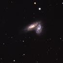 NGC  4567/68 Siamese Twins,                                Günther Eder