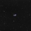 M51, La Galaxie du tourbillon (Grand champ),                                Greg Rodriguez
