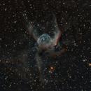 NGC2359 Thors Helmet,                                Djt