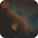The Seagull nebula in SHO,                                John