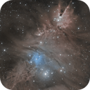 Christmas Tree Cluster and the Fox Fur Nebula,                                Ara
