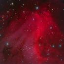 IC 5070 Pelican Nebula,                                Serge