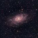 The Triangulum Galaxy, M33,                                Lee Morgan