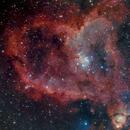 IC1805 Heart Nebula,                                Åke Liljenberg