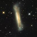 Hamburguer Galaxy (NGC3628),                                Eduardo Oliveira