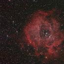 Rosette Nebula,                                Tony Cook