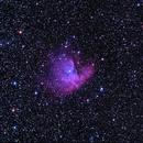 NGC 281,                                Eric Horton