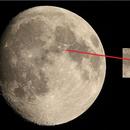 Bird on the Earth's Moon..!,                                Mohammed