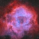 Rosette Nebula Hoo,                                Maxime Tessier