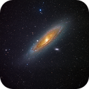 Andromeda in HaRGB,                                David Lindemann
