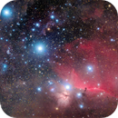 Orion's belt,                                Paolo Demaria