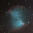 Dumbbell Nebula M27 ,                                Terry Grevenstuk