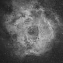 Rosette Nebula Ha,                                Joe Beyer