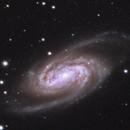 NGC 2903,                                Michael Finan