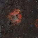IC1396,                                Łukasz Żak