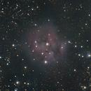 IC 5146. Cocoon Nebula.,                                Sergei Sankov