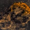 IC443 Jellyfish,                                Phil Montgomery
